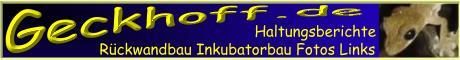 www.petrosaurus.de - Die Homepage zur Reptilienhaltung